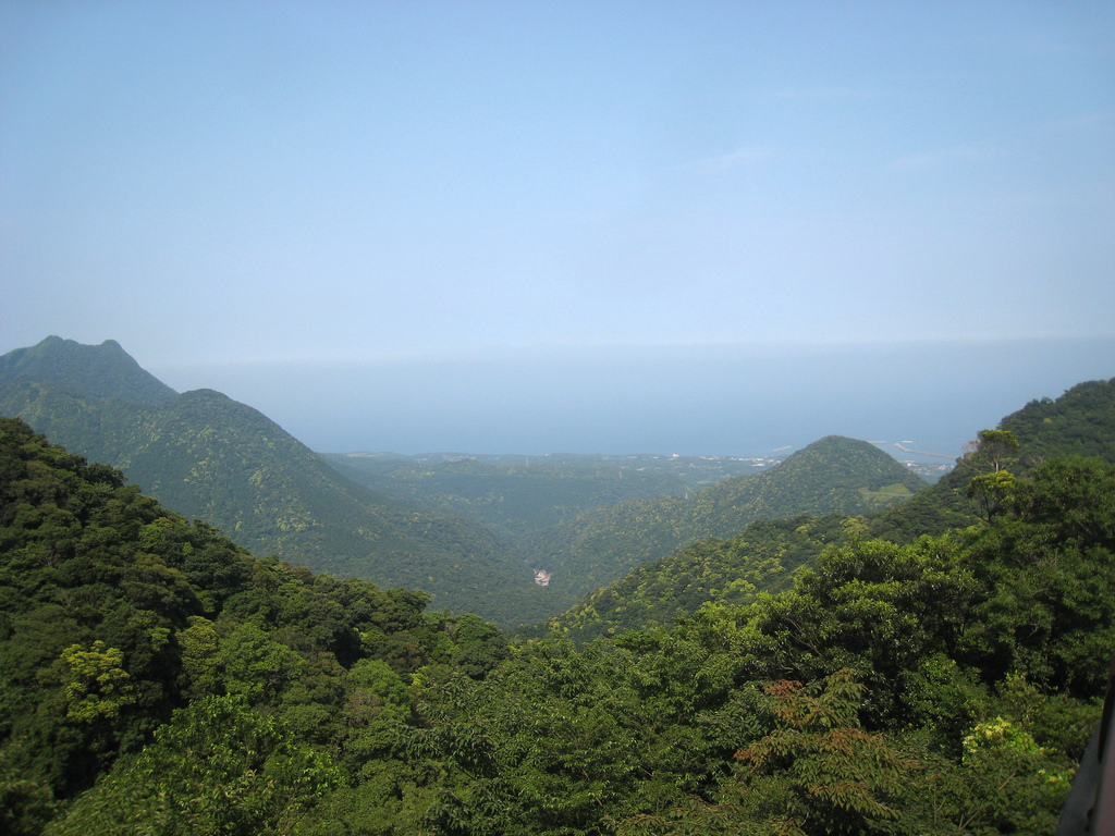 Mountains of Yakushima